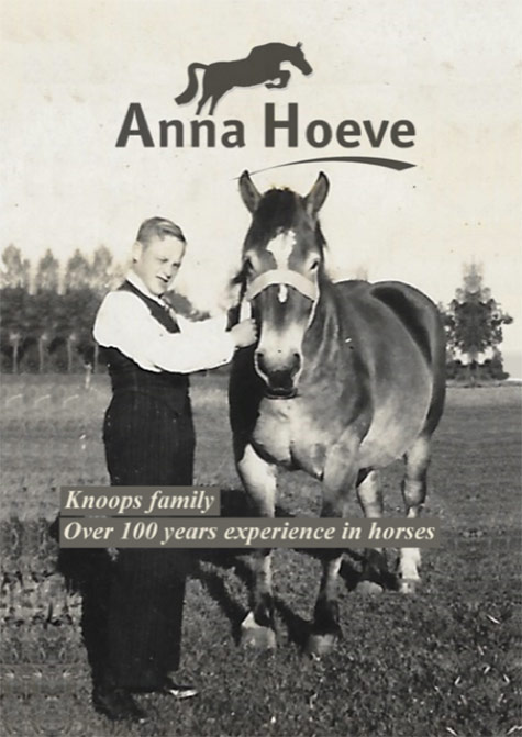 Poster Anna Hoeve Horses 100 years rxperience in horses