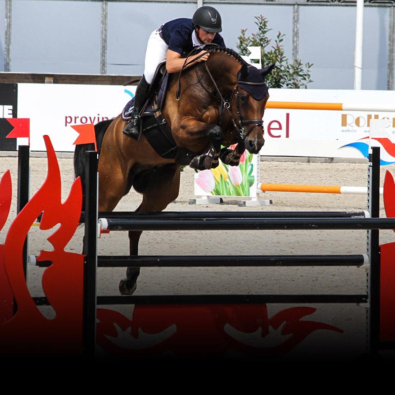 onze-paarden